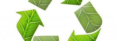 Broyage des déchets verts à domicile