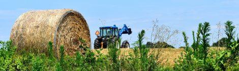 La foire des Jeunes Agriculteurs
